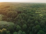 Land for Sale Decatur County Iowa-72