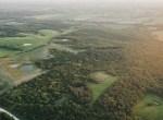 Land for Sale Decatur County Iowa-83