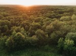 Land for Sale Decatur County Iowa-92