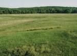 Land for Sale Clarke County Iowa-15