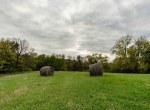 Land For Sale_Building Site_Dallas County Iowa_6 acres (20)