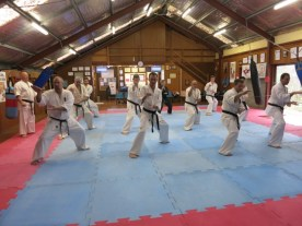Yudansha Training Weekend