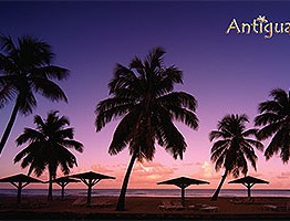 Sunset Antigua Postcard