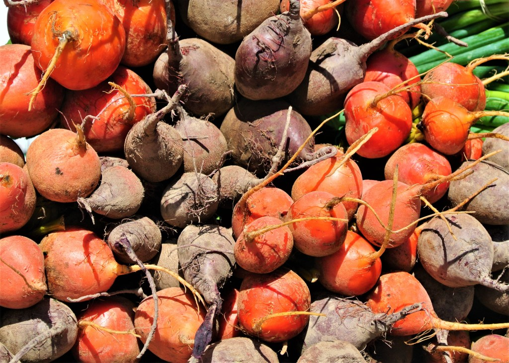 Root Vegetables on display at St. Jacobs Farmers Market - colourful beets!