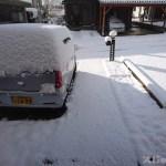 平地でも初雪