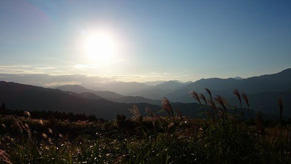 ゆとりすと大豊 すすきと山々