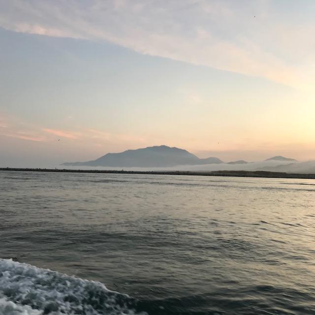 【釣り好き必見】おすすめの釣り動画サービスを紹介!