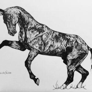 sketch-and-draw_horses-and-ponies-kids_amanda-herbert-2