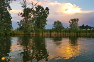 lake, sunset, photography, beautiful, trees, water, sky, kimballnelsonphotography