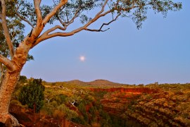 The moon rising over Dales Gorge