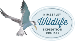 Kimberley Wildlife Expedition Cruises logo