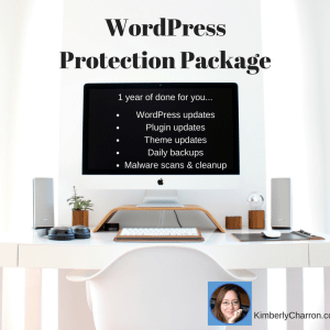 wordpress protection package