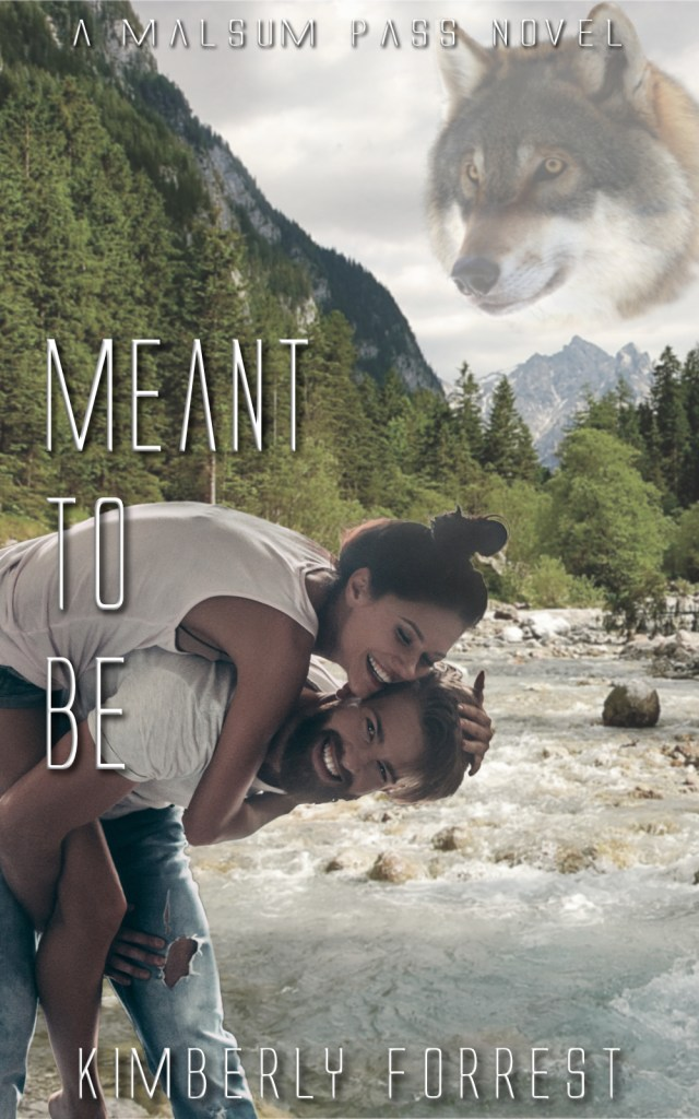 Book Cover: Meant To Be