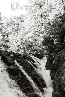 Waterfall, Summer, Landscape, Trees, black and white, Kimberly J Tilley