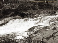 summer, waterfall, new hampshire, landscape, trees, Kimberly J Tilley,