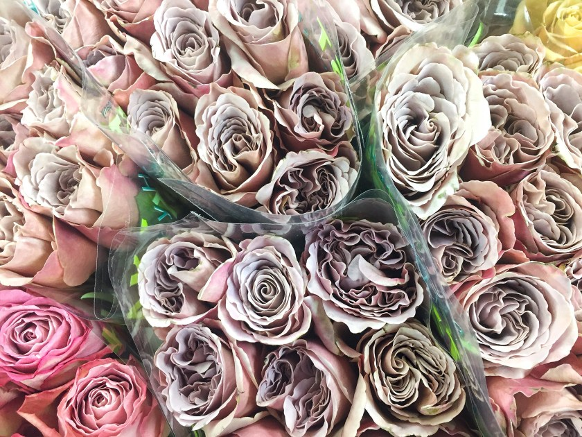 nyc flower market roses grey lavender lilac pink