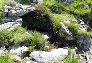 Columba Well