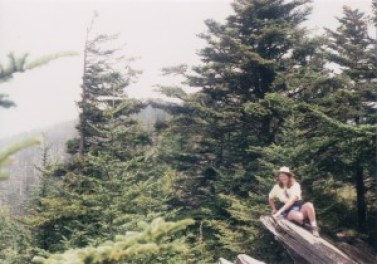 trees and a rock jutting out with a woman perched on the end