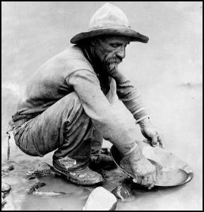 gold-miner-pic