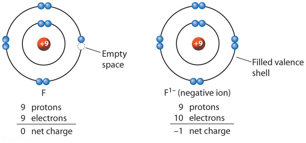 Which ion has the most shells that contain electrons