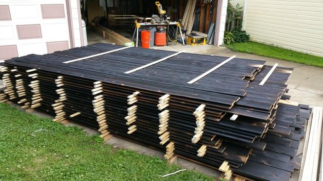 charred-cedar-pile-grows-again-3