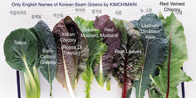 Korean Lettuce Wrap Ssam Varieties B