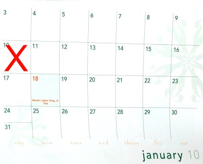 january calendar with red X