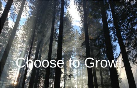 choose-to-grow-ii-467x300