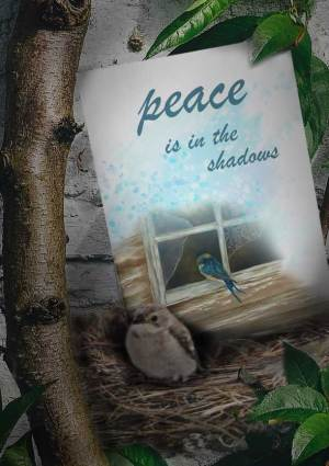 peace shadows love everywhere card image