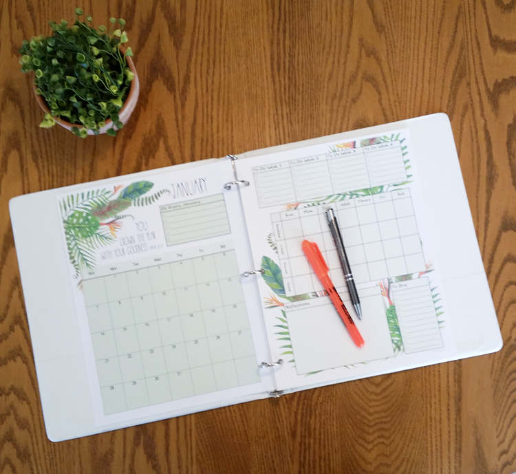January-planner pages-in-binder-photo
