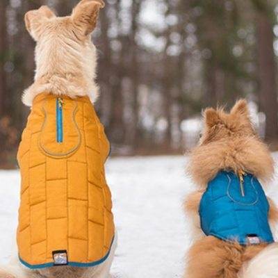 Gear Review: Active Accessories For Four-Legged Trekkers