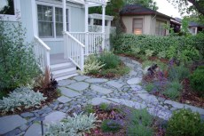 front_yard_and_path
