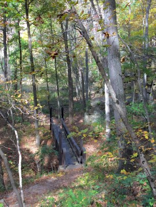 fall bridge 2