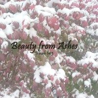 Hard Anniversaries and Beauty from Ashes