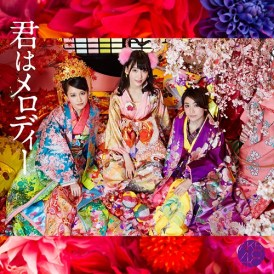 AKB48 Kimi wa Melody Cover Type D Limited