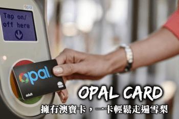 雪梨交通-澳寶卡(Opal card)使用方式、使用優惠,雪梨交通方式全攻略!