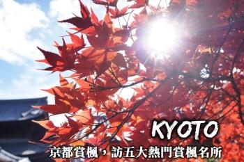 京都賞楓一日遊-京都5大紅葉名所推薦,前往京都探訪最美的紅葉明信片場景!