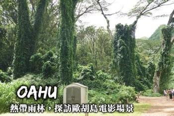 歐胡島-走進夏威夷熱帶雨林Manoa Falls,尋找飢餓遊戲與侏儸紀公園拍攝場景!