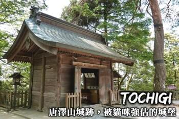 栃木景點-唐澤山城跡,日本國指定遺跡,一個被大量貓咪強行佔據的遺跡城堡!