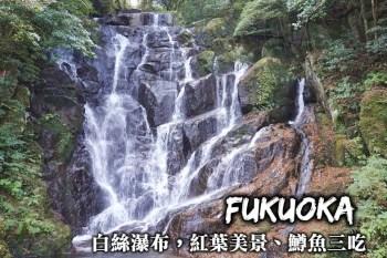 福岡-白絲瀑布散步,品嚐鱒魚三吃美味、造訪福岡繡球花、紅葉縣指定名勝!