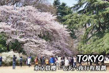 東京賞櫻自由行-行程交通規劃、推薦賞櫻景點,七天六夜東京賞櫻這樣玩!