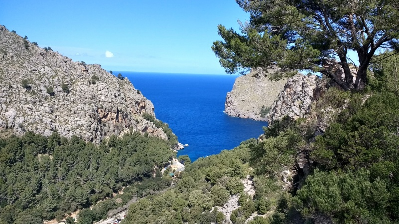 Blauwe zee