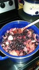 Fumbleberry Jam