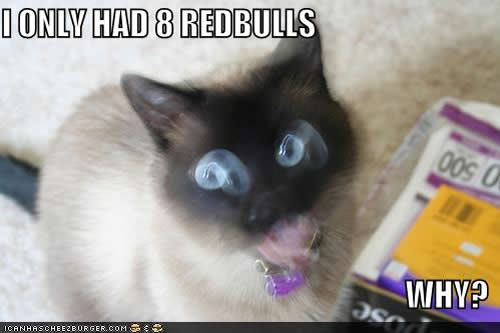 Favorite LOL Cats from