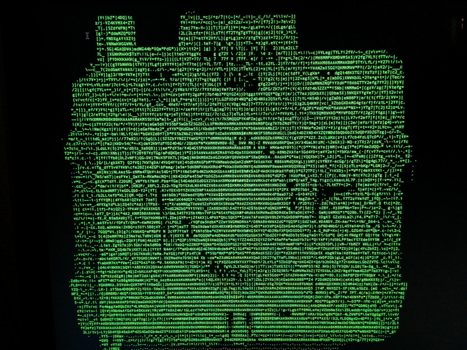Holga 120d ASCII text image