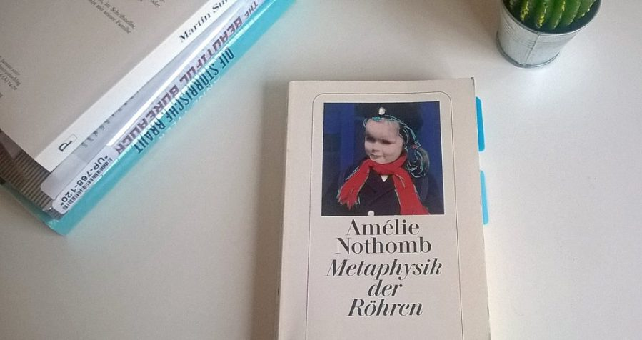 Amélie Nothomb: Metaphysik der Röhren