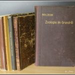 Neuzugänge & die Faszination mit alten Büchern