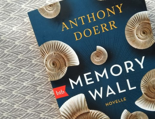 Anthony Doerr, Memory Wall