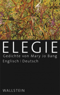Mary Jo Bang, Elegie Cover