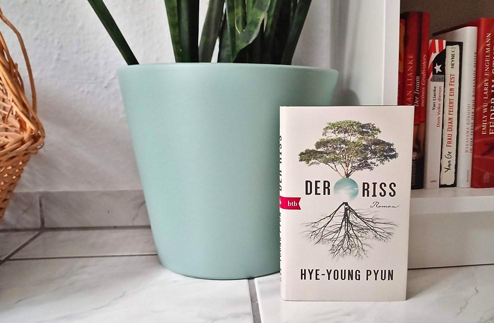 Hye-Young Pyun, Der Riss